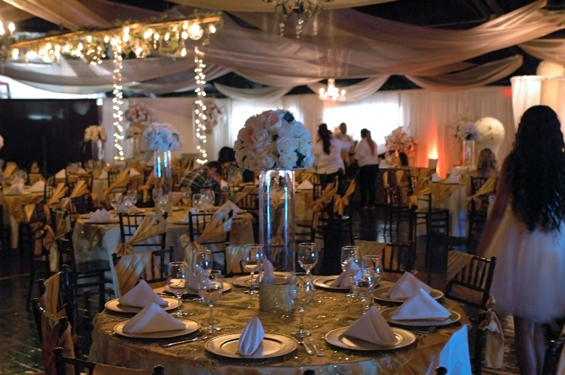 chateau at forest park - wedding rentals - 7234