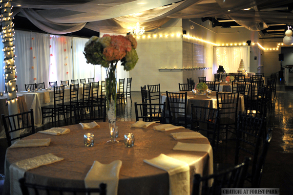 Chateau at Forest Park wedding day - 3766
