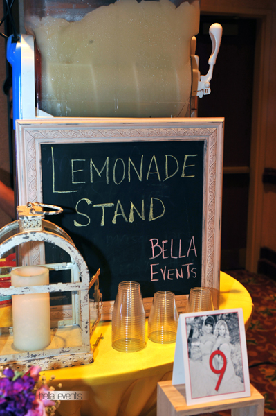 frozen lemonade station - 6031