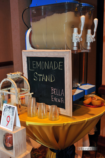 frozen lemonade station - 6042
